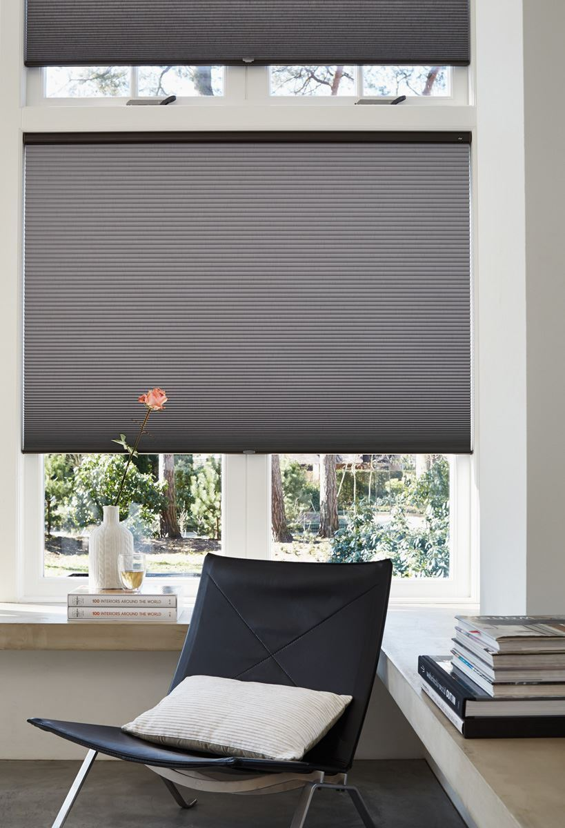 Afbeelding van Luxaflex® Duette® Shades 25 mm Top Down Bottom Up&Literise
